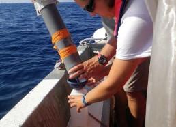 Récupération du plancton