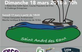 Affiche du Semi-marathon