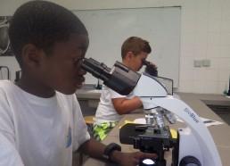 Loïc et Idrissa ont les yeux fixés au microscope