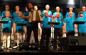 Concert des Fous de Bassan