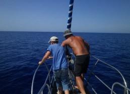 Hugo et le capitaine Fifi observent les dauphins