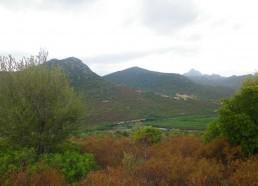 Un paysage unique
