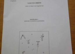 Fiche d'identification du plancton
