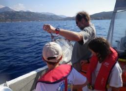 Préparation du filet à planctons