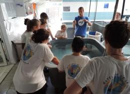 Maxence explique les soins effectués au centre