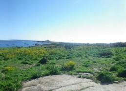 Arrivée à l'île de Penfret, dans l'archipel des Glénan