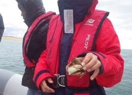 Luc avec le crabe péché