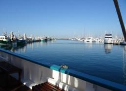 Notre douce vue du port !