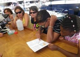 Lecture du guide à plancton