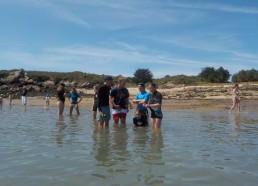 Les frileux mettent du temps à rentrer dans l'eau