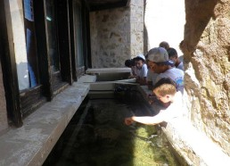Aquarium d'études à eau de mer
