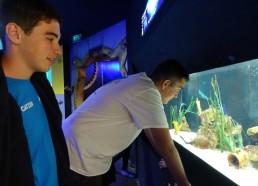 Les matelots découvrent des espèces marines fascinantes