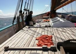 On fait sécher les carottes !