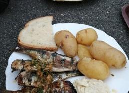 hum les bonnes sardines
