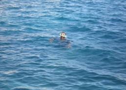 Plongée et baignade