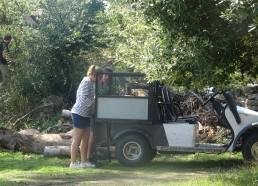 Pour transporter le bois on utilise la golfette