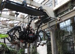 L'araignée géante en mouvement